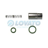 Ремкомплект клапана редуктора Lovato RGJ-3.2L